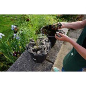 Felt Shillies - Garden Mulching