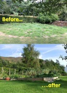 Biodegradable Garden Mulch Matting - Wool Mulch