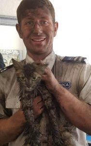 RSPCA officer rescuing a cat from a chimney