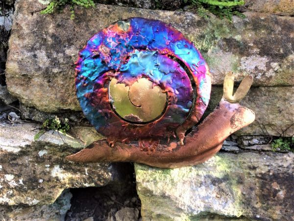 close up of iridescent copper snail hanging on a garden wall