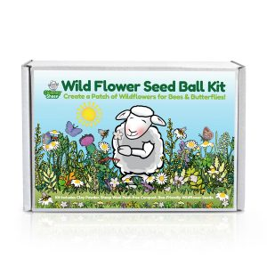 wildflower seedball kit box with label showing gorgeous wildflowers and a happy sheep