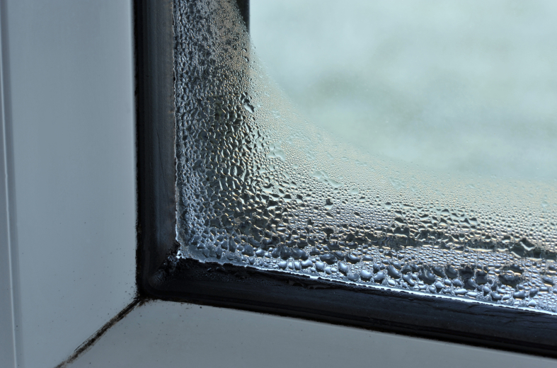 condensation on the window causing black mould - reduce damp by hanging laundry outside with a laundry mac