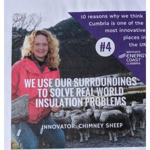 Sally Phillips of Chimney Sheep in 10 reasons why cumbria is the BEST