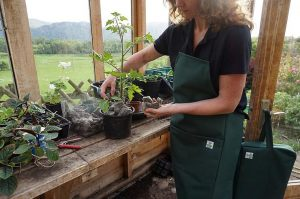 Sally Phillips modelling the Chimney Sheep garden apron and some natural gardening products