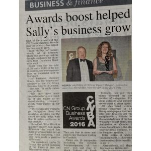 Article on Sally Phillip's attending business boost which helped Chimney Sheep to grow