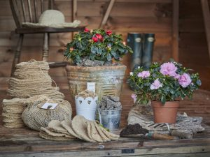 Collection of woolf and jute felt natural mulch mats and tree spats for gardening