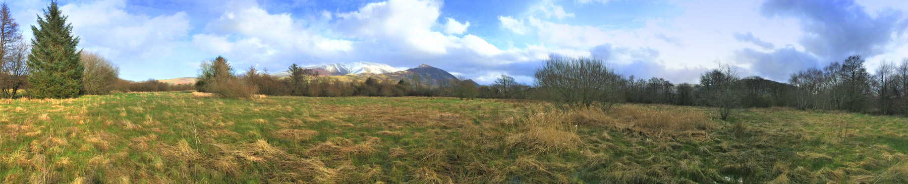 panoramic view of Skiddaw and Ullock Pike with 13 Acre field in foreground. A wide expanse of wet pastureland that is to be planted with thousands of trees. A few mature trees around the perimeter of the field