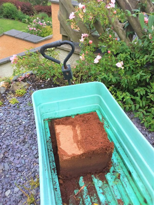 block of cocopeat in wagon with water added
