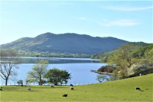 Low Fell From Crummock